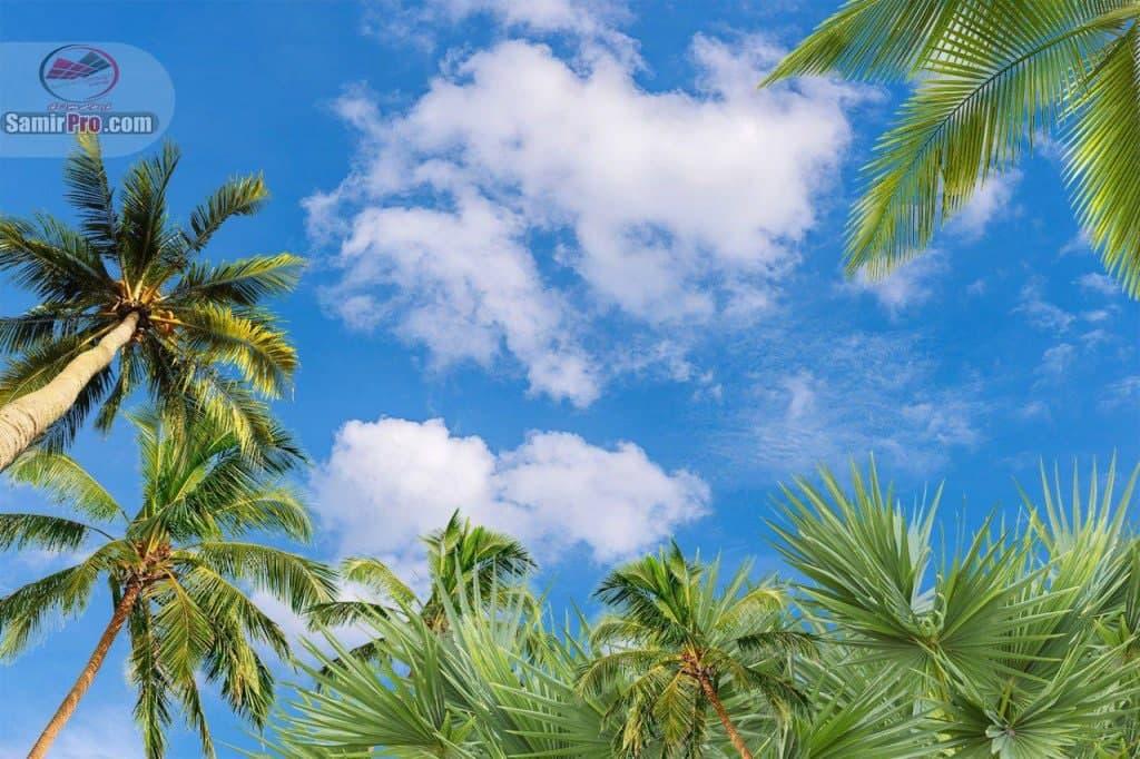 آسمان مجازی | فروش سقف کاذب حمام و سرویس بهداشتی