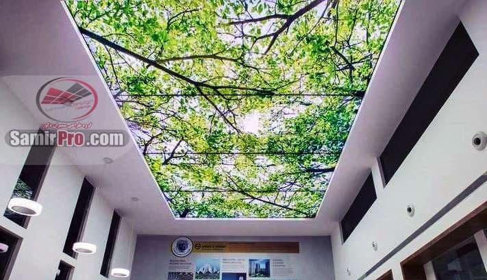 طرح جنگل سقف آسمان مجازی