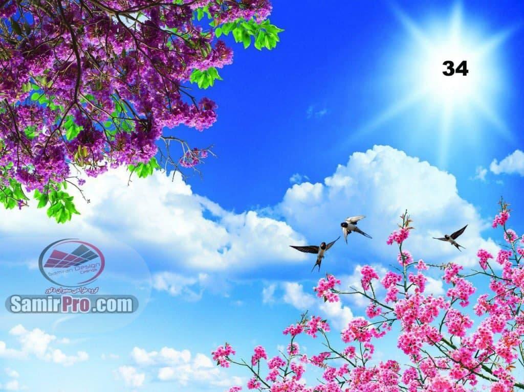 سقف آسمان مجازی