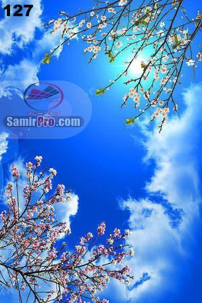 آسمان مجازی بهار